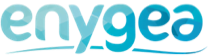 Enygea logo